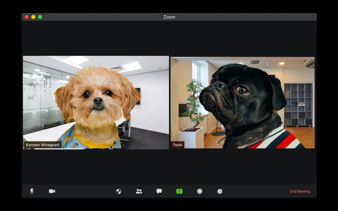 5 Reasons Video Meetings Are More Effective